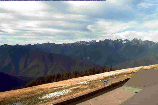 Hurricane Ridge - Port Angeles, WA