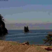 James Island Sea Stacks - Forks, WA