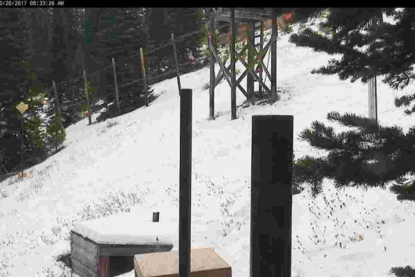 Sun Valley Snow Stake