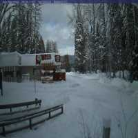 Apgar Village Webcam - West Glacier, MT