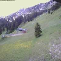 Bridger Bowl Deer Park Webcam - Bozeman, MT