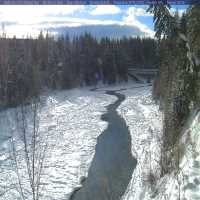 Middle Fork Flathead River Webcam - West Glacier, MT