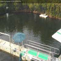 Dolphin Cove Webcam - Key Largo, FL