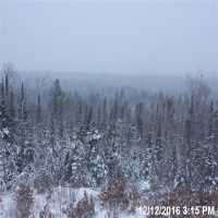 Ely Boundary Waters Webcam - Ely, MN