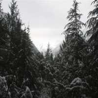 North Cascade Mountains Webcam - Newhalem, WA