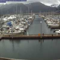 Seward Harbor Webcam - Seward, AK