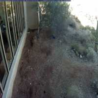 Saguaro National Park Webcam - Saguaro National Park, AZ